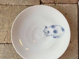 染付5寸猫皿 42の画像