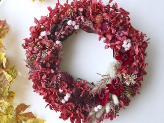 Bordeaux dryflower wreathの画像