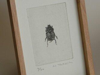 こがね虫・2011/銅版画(額あり)の画像