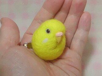 ☆選べる2タイプ☆   セキセイインコ ルチノー(濃い赤目)羊毛の小鳥☆選べる鼻の色の画像