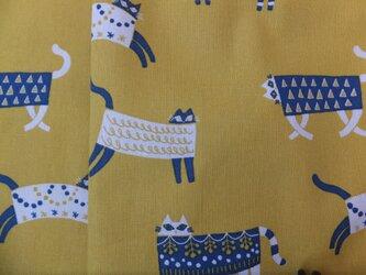 jupe de chat-jaune 猫の黄色いスカートの画像