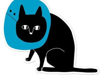 エリザベス黒猫ポストカード【8枚入り 1000円】の画像