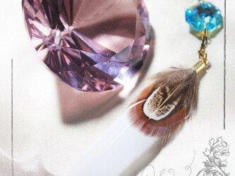 春鳥の贈り物(キジ×クリスタルブルーAB)の画像