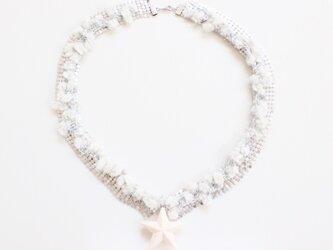 collar starの画像
