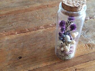 flower bottleの画像
