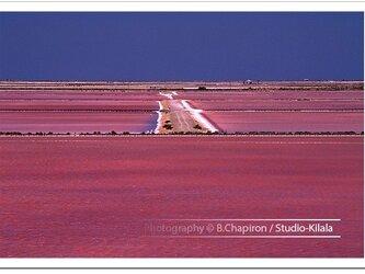 The salt roadの画像