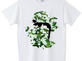 065 cissola Tシャツ【男女兼用タイプ】の画像
