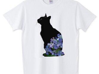 083 黒猫あじさいTシャツ【男女兼用タイプ】の画像