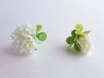 clover no.1 (ピアス)の画像