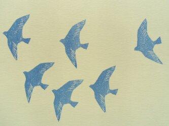 ポストカード(2枚) 鳥の画像