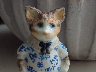 青い花模様の猫の画像