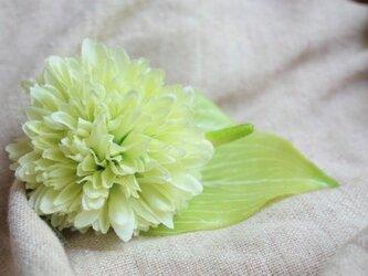トロピカルコサージュ☆グリーンの画像