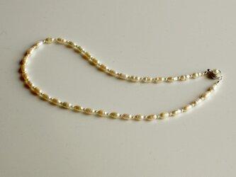 淡水パール 大粒ライス型パールのネックレスの画像