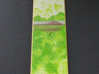 新緑の東福寺の画像