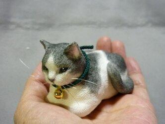 手乗り猫 目を細めて箱座りするはちわれ猫さん 絹の座布団付の画像