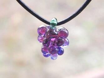 ぶどう - grape -の画像