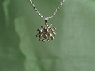 しろつめ草の花ネックレスの画像