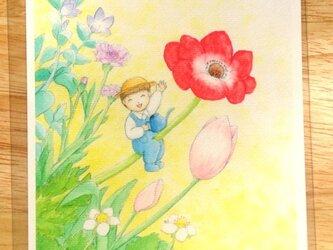 [2枚組]『spring garden』ポストカードの画像