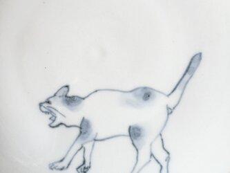 ➡︎染付5寸猫皿 45の画像