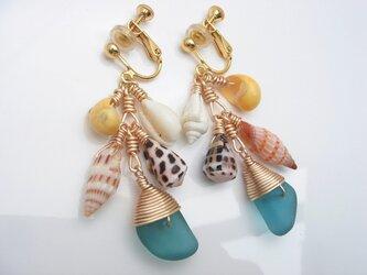 シーグラスと貝がらイヤリングの画像