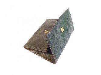 ボックスコインケース/グリーンの画像