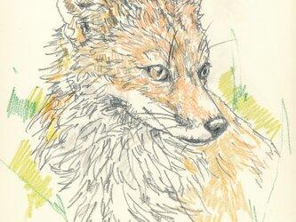 ※要写真 ペットの似顔絵 犬や猫以外もお描きします。の画像
