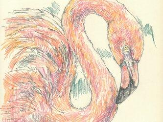 ※要写真 鳥もお描きします。ペットの似顔絵の画像