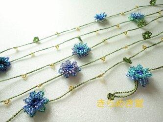 矢車菊の夏色ブルーラリエット の画像