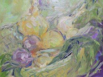今が旬 玉ねぎの収穫の画像