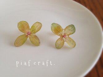 紫陽花のピアス シンプルタイプ グリーン#2の画像