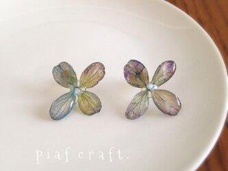 紫陽花のピアス シンプルタイプ パープルの画像