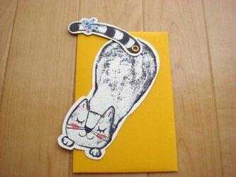 メッセージカード 猫さんの画像