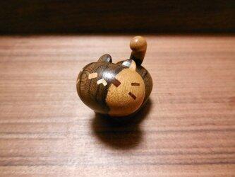 ジリコテ(シャムガキ)のネコノカミの画像