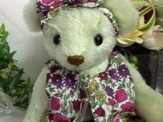 テディベア リバティファッションのアンリちゃんの画像