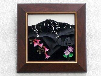 なつかしの山・思い出の花シリーズ「鞍掛山・コイワカガミ、クモイコザクラ」の画像