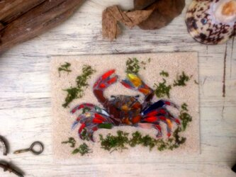 Sea glass wall decoration  「カニ」の画像