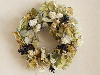 Green wreath  の画像
