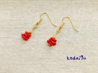 *赤珊瑚*ピアスの画像