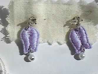 *紫の小花*の画像