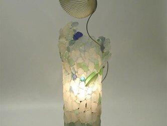 あおい貝のランプの画像