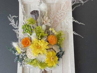 Botanical frame dryflowerの画像