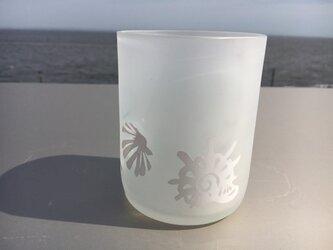 白い貝殻グラスの画像