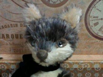 オオカミさん(薄いブルーの目)の画像