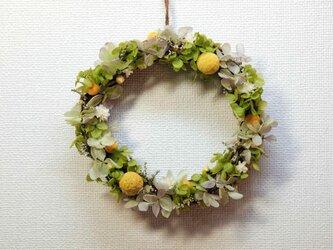 黄色いポンポンが可愛い♡グリーンナチュラルリース♪誕生日・結婚祝い・父の日に♡の画像