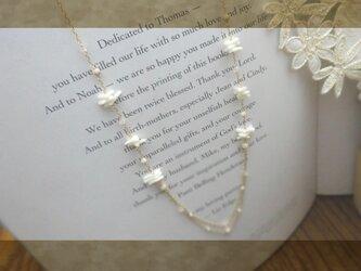 白珊瑚 ・・Necklace・・の画像