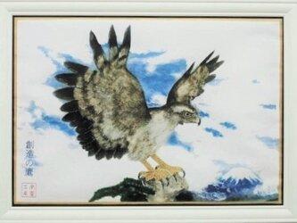 創造の鷹~羽ばたき~の画像