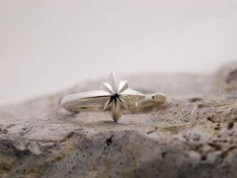 Meteor Bouds Ring Lady's 【SNR002R】 流星の絆 シルバーペアリング レディースの画像