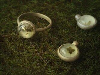 Prehnite ring 《葡萄石》の画像
