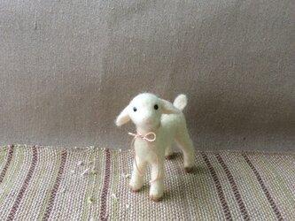 ウールの子ヤギ  ( 再出品 )の画像