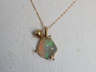 Seed orb oparl原石ネックレスの画像
